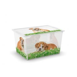 Kis C Box Puppy & Kitten XL