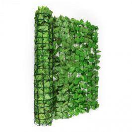 Blumfeldt Fancy Dark Ivy, světle zelený buk, plot na ochranu před pozorováním, ochrana před větrem, 300 x 100 cm