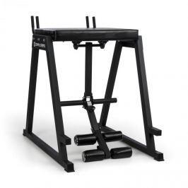 CAPITAL SPORTS Rehyper, posilovací lavice, 50mm koncové tyče, ocel, černá