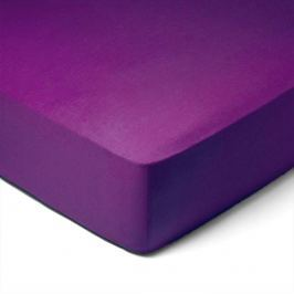 Forbyt, Prostěradlo, Jersey, tmavě fialová 70 x 140 cm