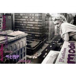 Obraz Marilyn on the Roof 80x120 cm