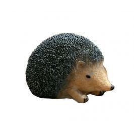 Zahradní dekorace Hedgehog S