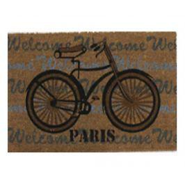 Rohožka Paris 45x75 cm