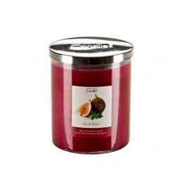 Vonná svíčka Warmth Fig and Herb