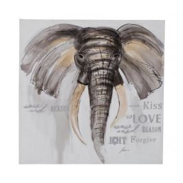 Obraz Elephant Kiss 80x80 cm