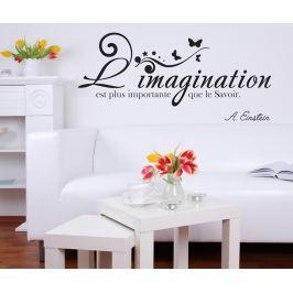 Nálepka Imagination & Knowledge