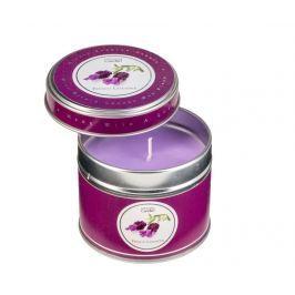 Vonná svíčka Cuteness French Lavender