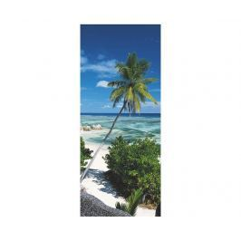 Fototapeta na dveře Palmtree 92x220 cm