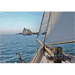 Fototapeta Sailing 254x368 cm