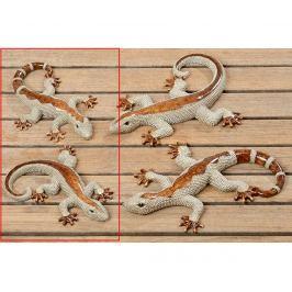 Sada 2 dekorací Bijan Lizard S