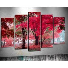 Sada 5 obrazů 3D Autumn