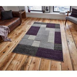 Koberec Matrix Grey and Lilac 160x220 cm