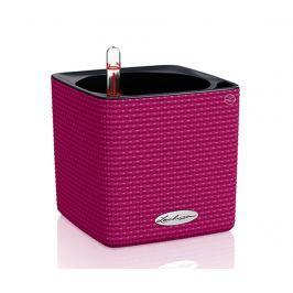 Sada květináč se samozavlažovacím systémem a obalem Cube Color Little Purple