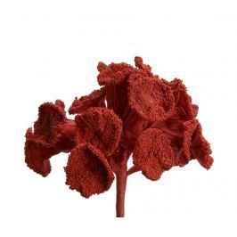 Umělá květina Coral Cherry