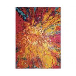Koberec Celestial Cayenne 160x221 cm
