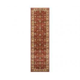 Koberec Persian Brick 66x229 cm