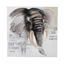 Obraz Elephant Side 80x80 cm