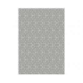 Koberec Norway Ixy Silver 160x230 cm