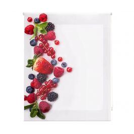 Zatemňovací roleta Berry Much 140x180 cm