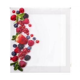 Zatemňovací roleta Berry Much 160x180 cm