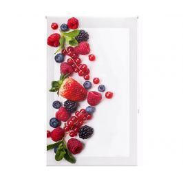 Zatemňovací roleta Berry Much 160x250 cm