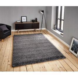 Koberec Loft Grey 200x290 cm