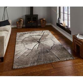 Koberec Woodland Beige 120x170 cm