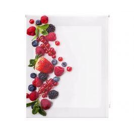 Zatemňovací roleta Berry Much 120x180 cm