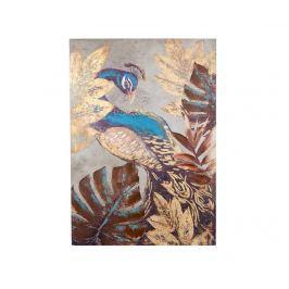 Obraz Peacock 100x70 cm