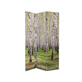Španělská stěna Woods