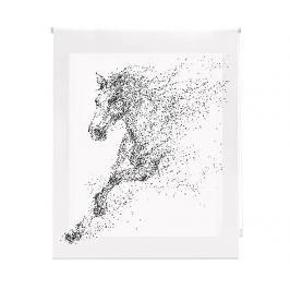 Zatemňovací roleta Horse 160x250 cm