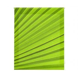 Zatemňovací roleta Venturi Design 180x250 cm