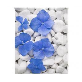 Zatemňovací roleta Pebbles and Flowers 160x250 cm