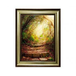 Obraz Forest Passage 80x110 cm