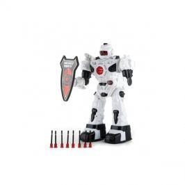 RC model ROBOT G21 CYBER COP